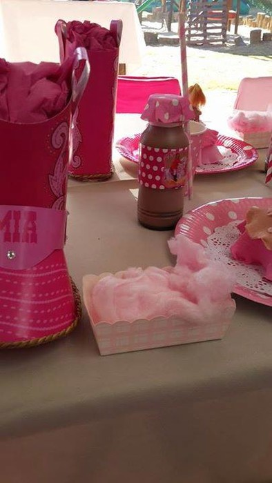 Our custom made Barbie Horses party supplies include party hats, printed t-shirts, badges and more.