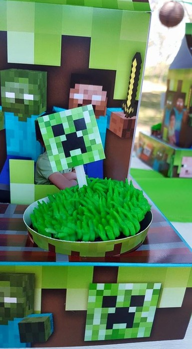 Our custom made Minecraft party supplies include party hats, printed t-shirts, badges and more.