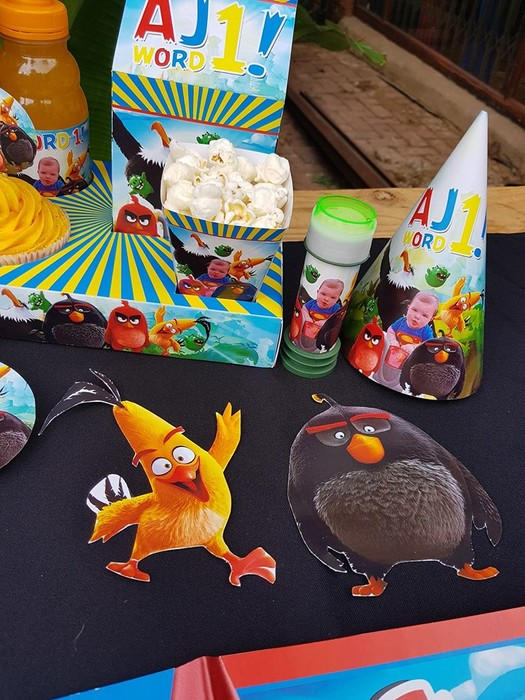 Kiddies Theme Parties not only make personalised Angry Birds party supplies, we can also do the entire party setup for you.