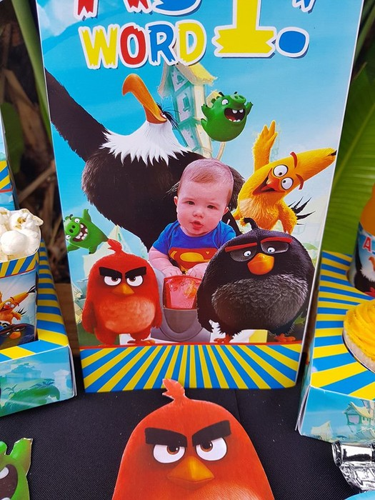 Our custom made Angry Birds party supplies include personalised pvc banners, party packs, movie boxes and more.