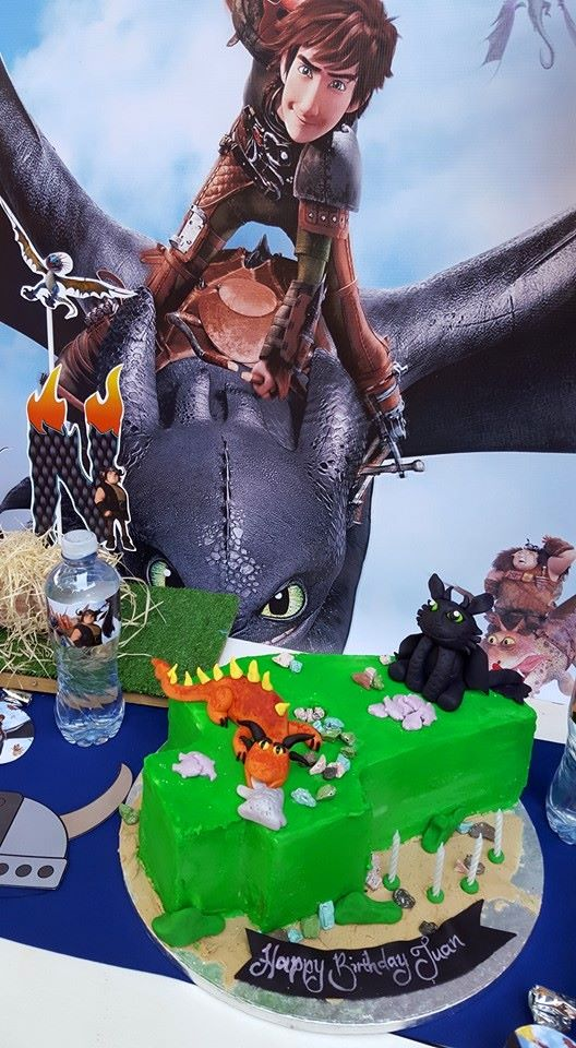 How to train your dragon party supplies we are a gauteng based events and party planning company specialising in custom made party supplies ccuart Choice Image
